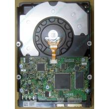 HDD Sun 500G 500Gb в Дербенте, FRU 540-7889-01 в Дербенте, BASE 390-0383-04 в Дербенте, AssyID 0069FMT-1010 в Дербенте, HUA7250SBSUN500G (Дербент)