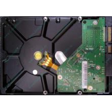 Б/У жёсткий диск 1Tb Western Digital WD10EVVS Green (WD AV-GP 1000 GB) 5400 rpm SATA (Дербент)